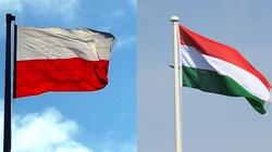 Genialny węgierski romantyk - wreszcie po polsku. ,,To potwierdzenie wspaniałej współpracy pomiędzy naszymi krajami'' - miniaturka