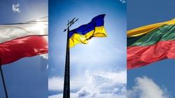 Deklaracja Polski, Litwy i Ukrainy: Ukraina broni granic Europy! - miniaturka
