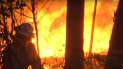 Portugalia w płomieniach! ''Dym zasłania słońce'' - miniaturka