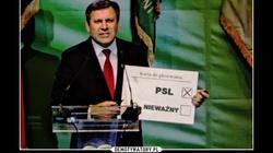 """W PSL-u panika. """"Zielony sztandar"""" drży jak osika - miniaturka"""