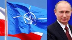 Szef NATO: Wojska sojuszu w Polsce już w przyszłym roku - miniaturka