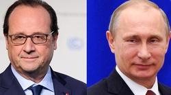 Francja ma kompleks Napoleona i nie chce drażnić Niedźwiedzia - miniaturka