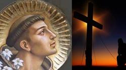 Niezwykłe cuda za sprawą św. Antoniego dzieją się w Polsce - miniaturka