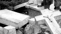 Olsztyn: nieznani sprawcy zdewastowali groby dzieci - miniaturka