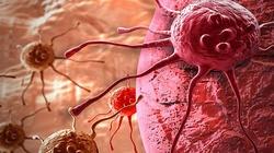 Amigdalina. Związek, który leczy raka - miniaturka