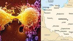 Oto jak wygląda polska mapa raka - miniaturka