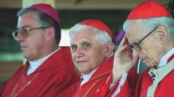 Kard. Józef Ratzinger: Homoseksualiści, żyjcie w czystości - miniaturka