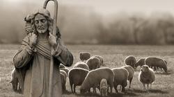 Po co jest religia w szkole? - miniaturka