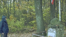 Wzruszające video. Żołnierz AK wciąż odwiedza grób kolegi z oddziału, zabitego przez UB - miniaturka