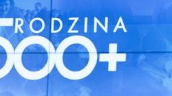 Program 500 plus ,,uwiera liberalną Polskę''. Rodzi się więcej dzieci - miniaturka