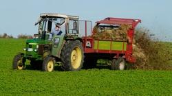 Świetna wiadomość dla rolników! Handel detaliczny do 100 tys. zł bez podatku  - miniaturka