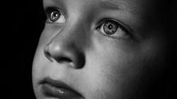 'Rodzice' sprzedawali syna pedofilom. Spędzą za kratami 12 lat - miniaturka