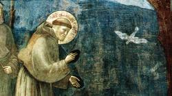 Benedykt: W Boże Narodzenie bądźmy jak św. Franciszek - miniaturka