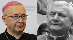 Abp Gądecki: Bp Janiak nie podlega już ludzkiemu osądowi - miniaturka