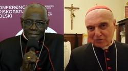 Rezygnacja kardynałów Saraha i Comastriego. Papież przyjął ich rezygencję - miniaturka