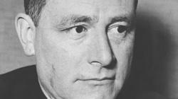 Carl Schmitt: Pozytywne pojęcie konstytucji - miniaturka