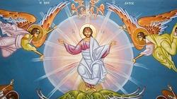 Św. Augustyn: Na tron niebieski zostało posadzone ludzkie ciało - miniaturka