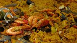 Niebezpieczne owoce morza. To nie jest pokarm dla ludzi!!! - miniaturka