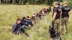 Sondaż. Czy Polacy popierają rząd i nie chcą nielegalnych imigrantów? - miniaturka