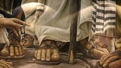 Czy Bóg przyzwala na śmierć, cierpienie i zło? - miniaturka