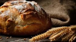 Kochanie pieczemy zdrowy chleb z … warzyw! - miniaturka