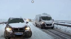 Hiszpania i Portugalia sparaliżowane opadami śniegu - miniaturka