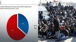 Większość Polaków nie chce w Polsce uchodźców. To są fakty! - miniaturka