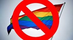 Rada Europy debatuje nad tym, by parom homoseksualnym umożliwić adopcję dzieci! - miniaturka
