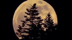 Dzisiejsza Ewangelia: ukażą się wielkie znaki na niebie - i mamy superpełnię księżyca! - miniaturka