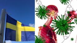 W Szwecji pomimo braku maseczek i wprowadzenia lock downu trupy nie walały się na ulicach - miniaturka