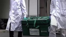 Fake Hunter PAP obala rewelacja ws. braku rosyjskiej szczepionki w Polsce - miniaturka