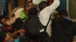 Dramatyczne sceny na dworcu w Budapeszcie. Imigranci szturmują pociągi! - miniaturka
