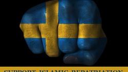 """""""Szwecjalizm"""" na granicy załamania albo pieriestrojki - miniaturka"""