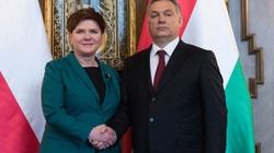 Grzegorz Górny dla Fronda.pl: To historyczny sojusz Polski i Węgier na rzecz obrony tożsamości Europy! - miniaturka