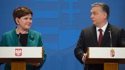 Orban przyjedzie do Polski - miniaturka