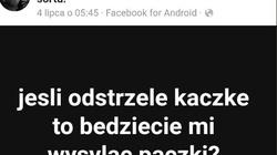 'Odstrzelę kaczkę'. Policja zajmie się autorem wpisu na facebookowej grupie? - miniaturka