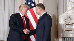 Prof. Ryba: Polska, USA i geopolityka. Kreśli się wyraźny układ - miniaturka