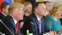 Duda i Trump spotkają się w tym roku dwukrotnie? Minister ujawnia szczegóły - miniaturka
