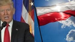 Prof. Piotr Wawrzyk dla F: Ekipa Trumpa - najbardziej propolska od lat - miniaturka