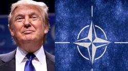 NATO wypowiada wojnę Państwu Islamskiemu! - miniaturka
