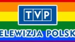 Sellin: TVP promując homoseksualizm łamie prawo - miniaturka