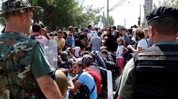 Uchodźcy wracają do domów! Jadą tam na wakacje - miniaturka