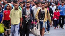 System integracji uchodźców wielką klapą - miniaturka
