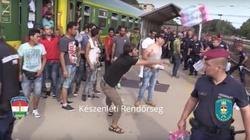 Szokujące nagranie! Imigranci wyrzucają jedzenie! - miniaturka
