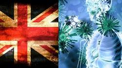 Koronawirus. Wielka Brytania. Ponad 700 zgonów w ciągu doby - miniaturka
