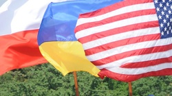 USA: Ukraina i Gruzja to bastiony chroniące Zachód przed agresją Rosji - miniaturka