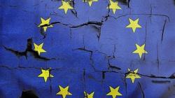 Sondaż. Czy Polska miałaby lepiej poza Unią Europejską tak jak Wielka Brytania? - miniaturka