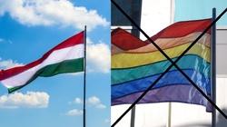 Węgry uderzają w gender i wprowadzają płeć biologiczną - miniaturka