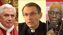 ,,Księża muszą żyć wyłącznie dla Boga''. Francuski biskup popiera kard. Saraha i Benedykta XVI - miniaturka