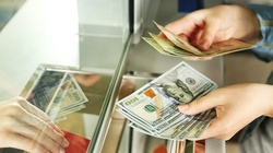 Stabilizacja na rynku Forex? Jak mają się zagraniczne waluty? - miniaturka